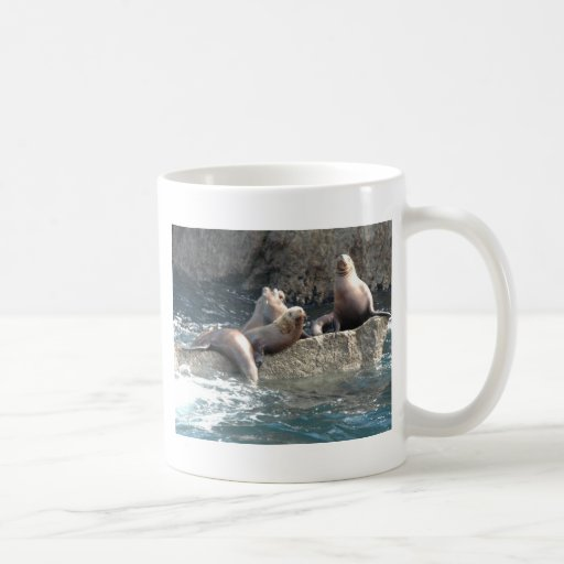 Leones marinos taza de café