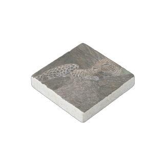 leopard-19 stone magnet