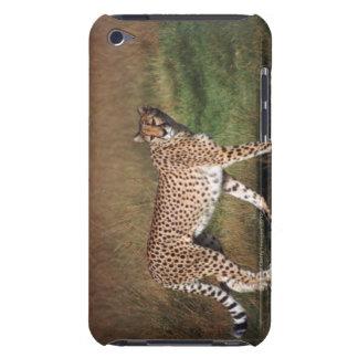 leopard 3 Case-Mate iPod touch case
