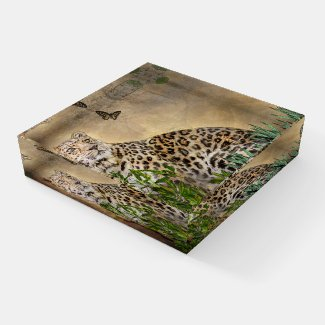 Leopard and Butterfly Wildlife square Paperweight