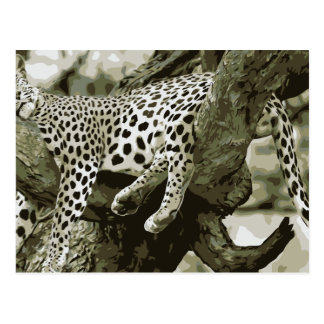 Leopard Art Design. The free sleeping cute Cat Postcard