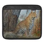 Leopard Beauty Sleeve For iPads