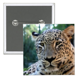 Leopard Big Cat prints  Button
