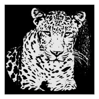 Leopard Black And White Portrait Posters