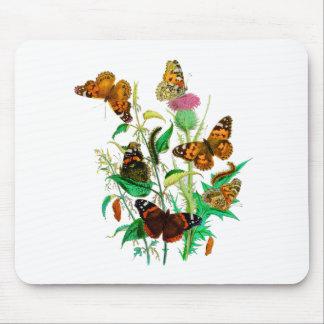 Leopard Butterflies & Caterpillars & Pink Thistle Mouse Pad