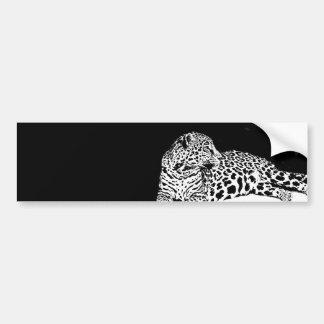 Leopard Car Bumper Sticker