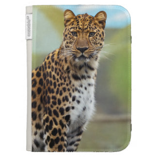 Leopard Kindle 3G Covers