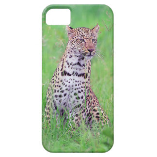 Leopard iPhone 5 Cases