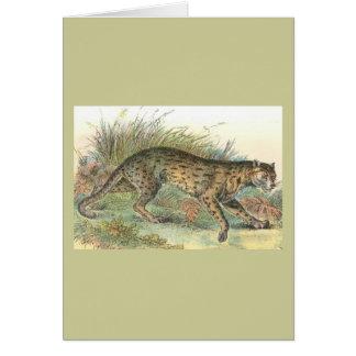 Leopard-Cat (Javan Variety) Felis javanensis Greeting Card