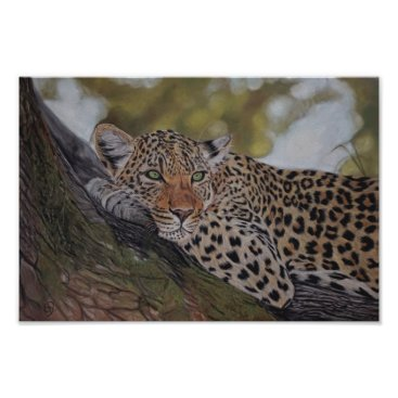 Art Themed Leopard cat lying in a tree poster