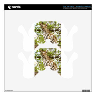 Leopard Cub on a Limb PS3 Controller Skins