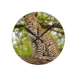 Leopard Cub on a Limb Round Clock
