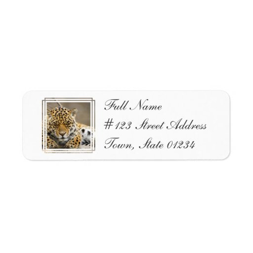 Leopard Cub Return Address Mailing Label