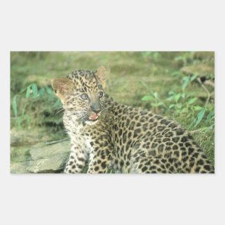 leopard cub rectangular stickers
