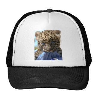 Leopard cub trucker hat