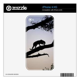 Leopard Decals For iPhone 4
