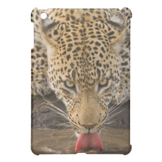 Leopard drinking, Greater Kruger National Park, Case For The iPad Mini