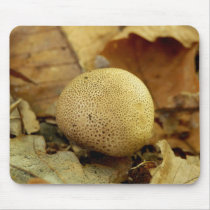 Leopard Earthball Fungus Mouse Pad