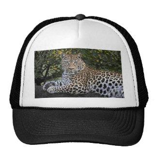 Leopard Empress Trucker Hat