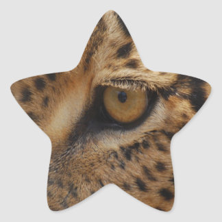 Leopard Eye Star Sticker