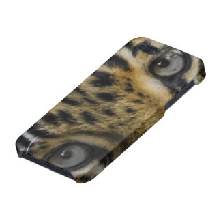 Leopard Face of Hunger iPhone SE/5/5s Cover