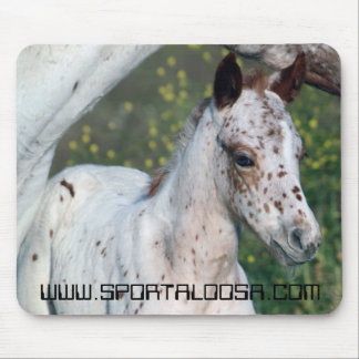 Leopard Filly Mouse Pad