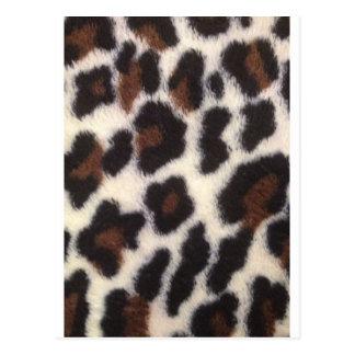 Leopard Fluff Postcard