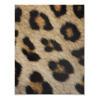 Leopard Fur Texture Pattern Photo Print