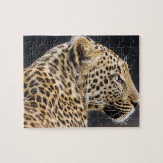 Leopard Game Puzzle