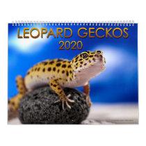 Leopard Gecko 2020 Calendar (12 Month)