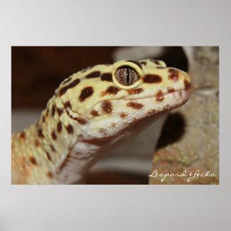 leopard Gecko Canvas Poster