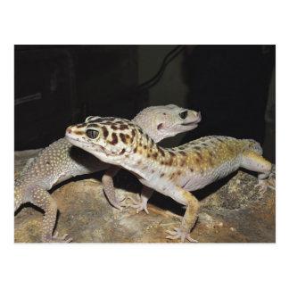 Leopard gecko design for all gecko lovers! postcard
