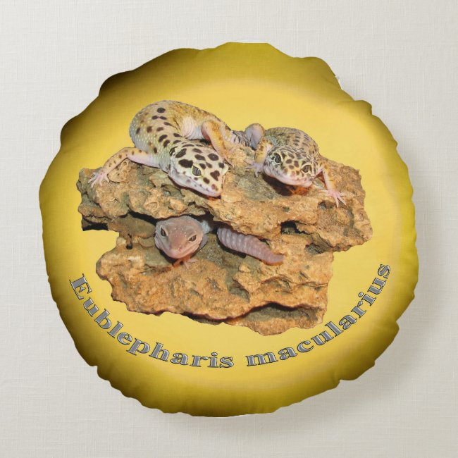 Leopard gecko design for all!