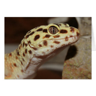 Leopard Gecko Greeting Cards