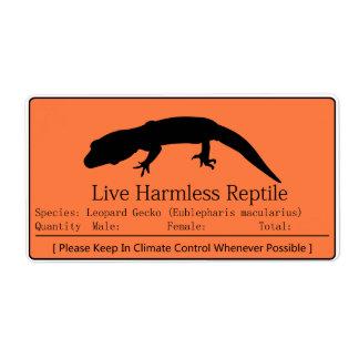 Leopard Gecko - Orange Label