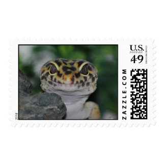 Leopard Gecko Postage Stamp
