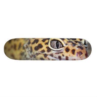 leopard gecko skateboard