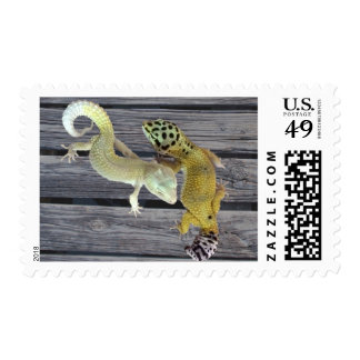Leopard Geckos – Coat of Many Colors Postage
