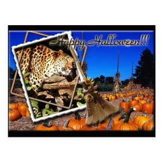 leopard-halloween-2010-0010 postcards