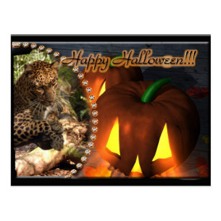 leopard-halloween-2010-0012-b post cards