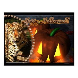 leopard-halloween-2010-0012 post card