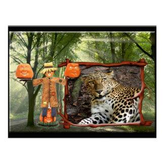 leopard-halloween-2010-0019 post card