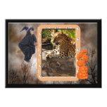 leopard-halloween-2010-0021 comunicado