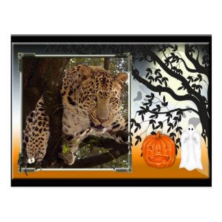 leopard-halloween-2010-0025-h postcards