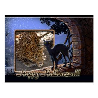 Leopard Halloween Postcard