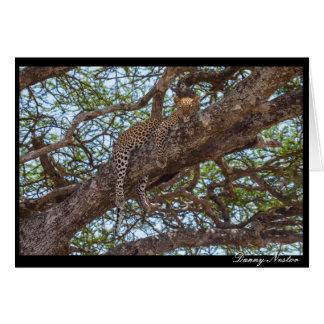 Leopard Hangout Card