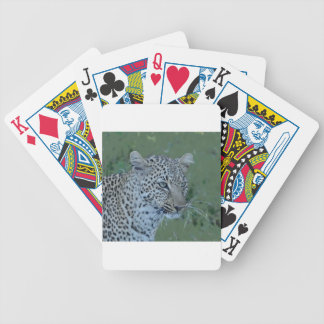 Leopard  Head Tee Bicycle Playing Cards