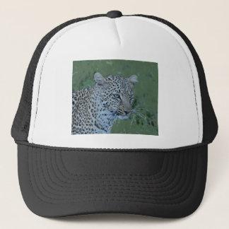 Leopard  Head Tee Trucker Hat