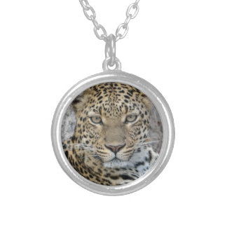 Leopard Headshot Tom Wurl.jpg Silver Plated Necklace