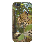 Leopard i cover for iPhone 5